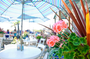 Top Shelf: Best Bars on Long Beach Island