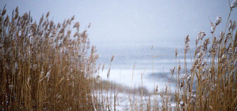 Long Beach Island Winter