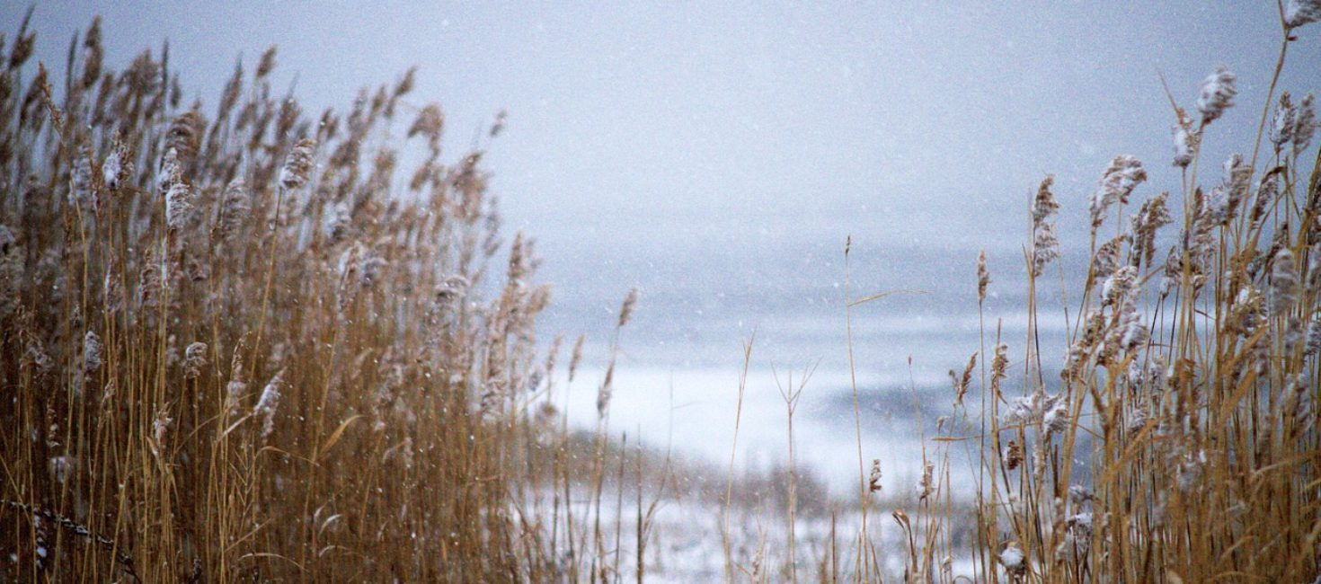 Long Beach Island Winter, How Locals Survive