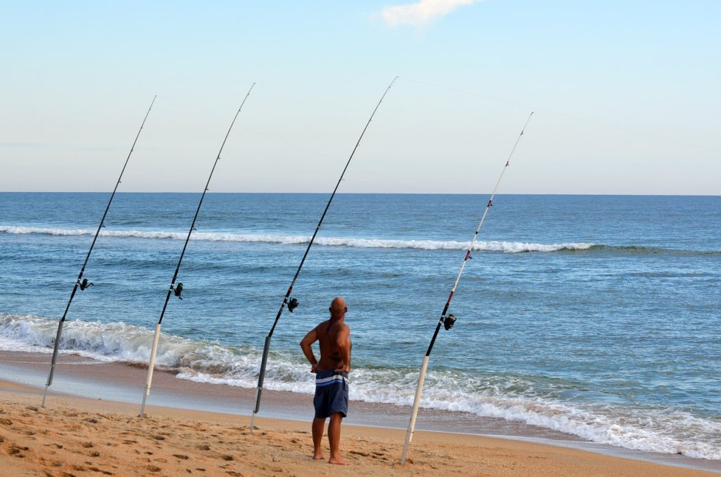 Long Beach Island NJ Fishing Report