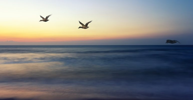 26 Reasons to Spend Spring Break on LBI