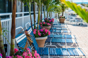 LBI Vacation Guide – Free Printable Download!