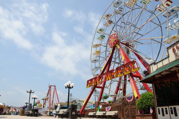 Things To Do in LBI