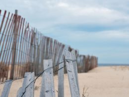 What To Do in LBI: Useful Resources